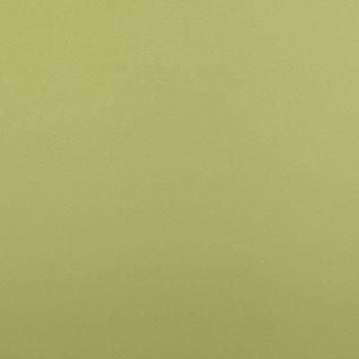 Karambola žalia