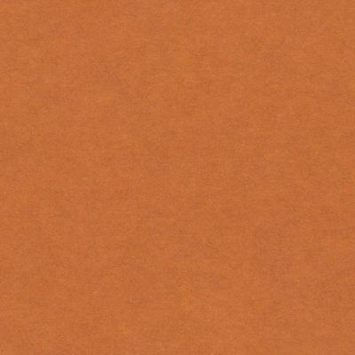 Spalvotas MDF Orange