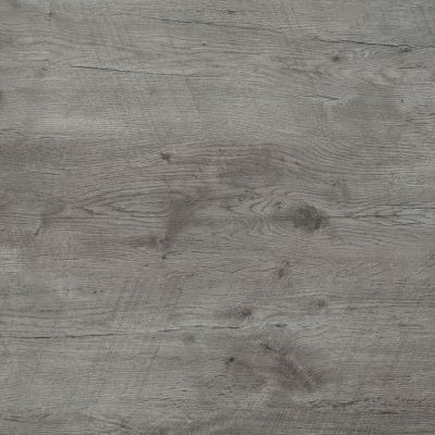 Grey Lancelot oak