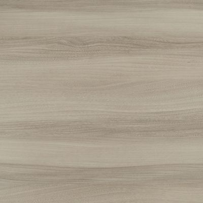 Light grey elm