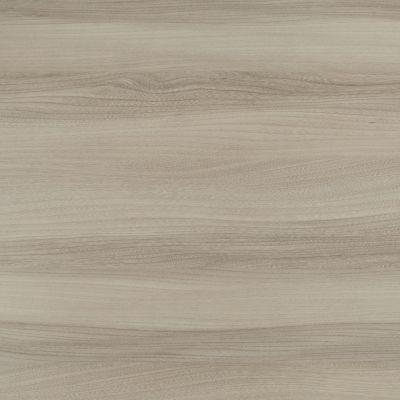 Light grey elm